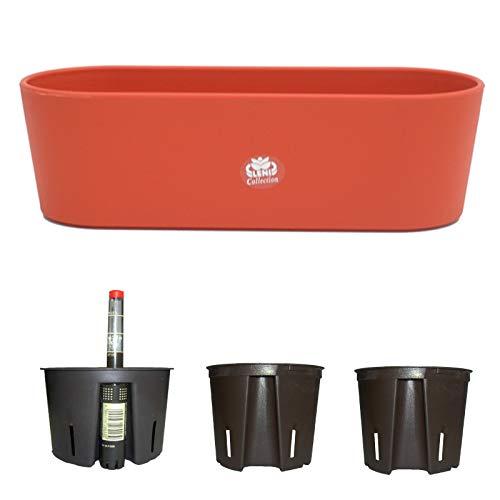 Blumenkasten Kunststoff + Bewässerungssystem Set5 Kunststoff Flori Pflanzschale Orange für Hydrokultur L 36.0cm B 13.5cm H 11.0cm