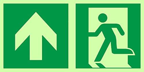 Anro Warnschild für Notausgang E001/5   Nachleuchtendes PVC Sicherheitsschild Fluchtweg   Selbstklebend Rettungsweg-Schild für Betriebe, Produktion & Kliniken   Farbe: Grün