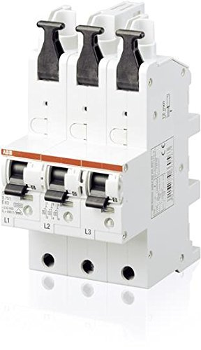 ABB Automatic fuses Main-circuit breaker S751/3-E 40 A by ABB