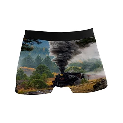 N\\O Herren Boxershorts Unterwäsche Badehose Geschenk für Männer Dampfzug Lokomotive Smoke, einfarbig, Large