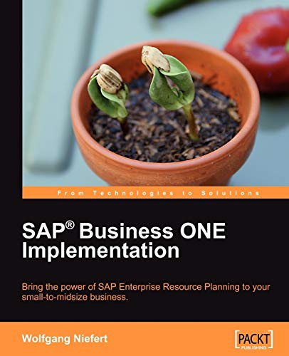 SAP Business ONE Implementation (English Edition)