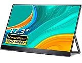 17,3 Zoll Portable Monitor, UPERFECT Tragbarer Bildschirm USB C Gaming Monitor 1920 * 1080 Full HD IPS Mobile Display mit Typ-C OTG Mini DP HDMI für PC Handy PS3 PS4 Xbox Raspberry Pi