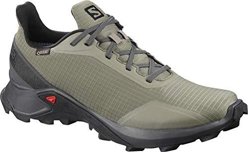 Salomon Alphacross GTX, Zapatillas de Trail Running para Hombre, Verde (Castor Gray/Ebony/Black), 44 EU