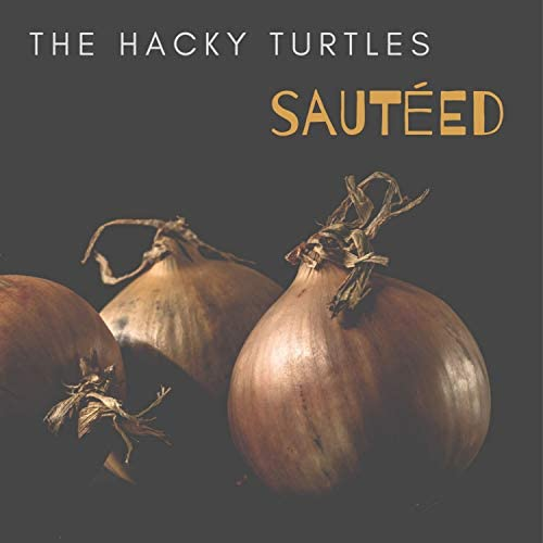 The Hacky Turtles