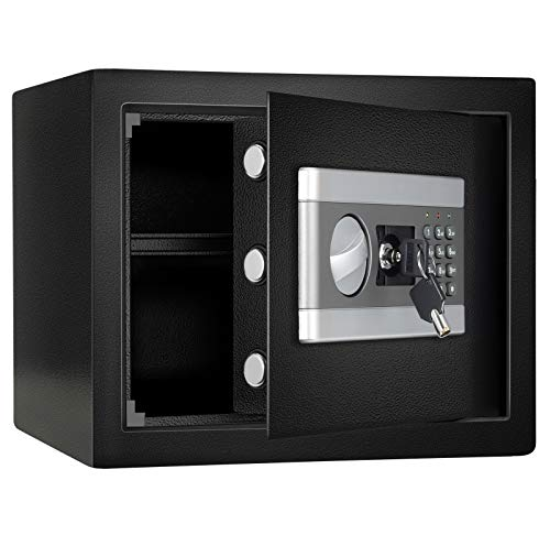 1.0 Cub Fireproof and Waterproof Safe...