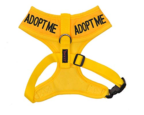 Dexil Color Coded Cat Harness Warning Alert Vest Padded and Water Resistant Yellow Adopt ME (S-M)