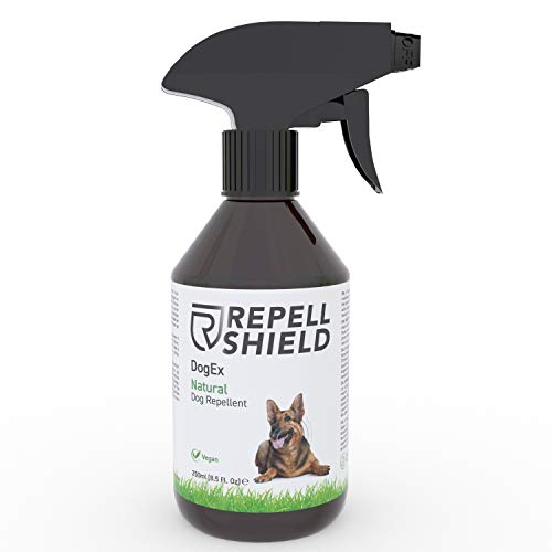 Repell Shield Spray Repellente per Cani Bio - Disabituante Cani Naturale - Repellente per Cani da Esterno e Interno, Efficacia a Lunga Durata - Repellente Cani Pipì - Fragranza Menta Piperita, 250ml