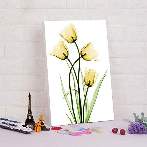 yuandp DIY digitaal schilderij digitale schilderij van digitale module schilderij bloem tulp wooncultuur leven foto nummer 40 * 50 cm