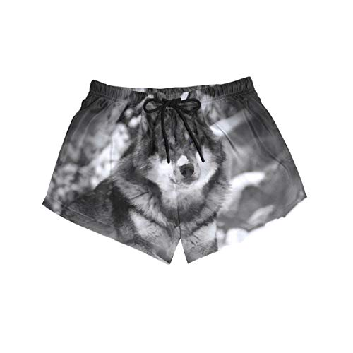 DEZIRO Wolf in The Snow Surf - Bañador para mujer 1 S