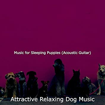 Music for Sleeping Puppies (Acoustic Guitar)