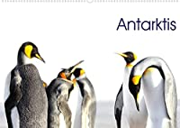 Antarktis - viaje.ch (Wandkalender 2022 DIN A2 quer): Landschaft und Tiere im ewigen Eis (Monatskalender, 14 Seiten )