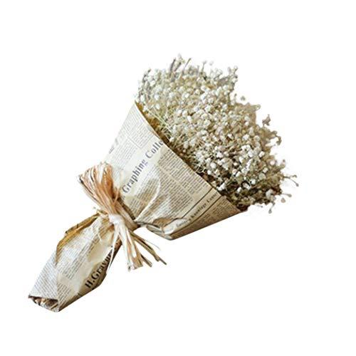 WDOIT - 1 Ramo de Flores secas Naturales Gypsophila, para decoración de casa, jardín, Boda, Fiesta
