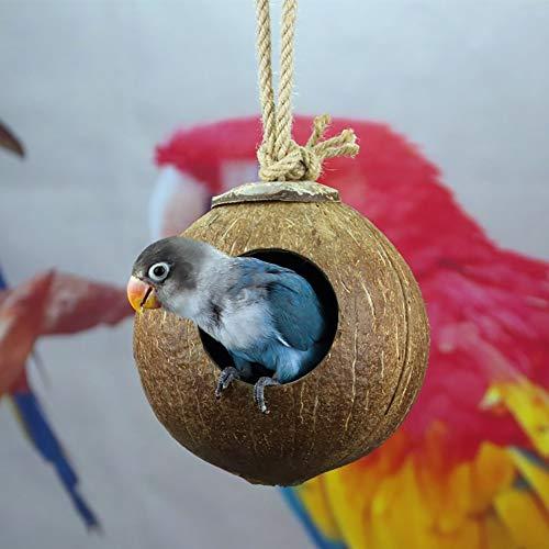 Casas para pájaros Coco Shell Bird Nest House Retro Arte y artesanías al aire libre campo for la casa del pájaro de madera al aire libre de la casa del pájaro pequeño pájaro cabina Birdhouse para Pája