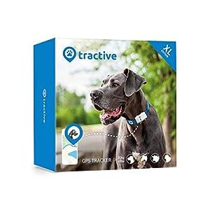 immagine di Tractive Localizzatore GPS per cani. Il dispositivo leggero e impermeabile per ogni collare - Edizione XL