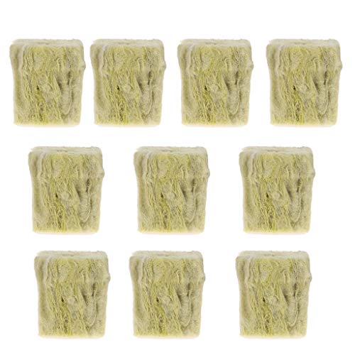 cdhgsh Rockwool Plant Starterwürfel Hydroponic Grow Soilless Cultivation Pflanzbasis Rockwool Cubes