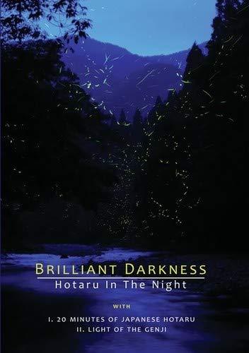 Brilliant Darkness [Edizione: Stati Uniti]