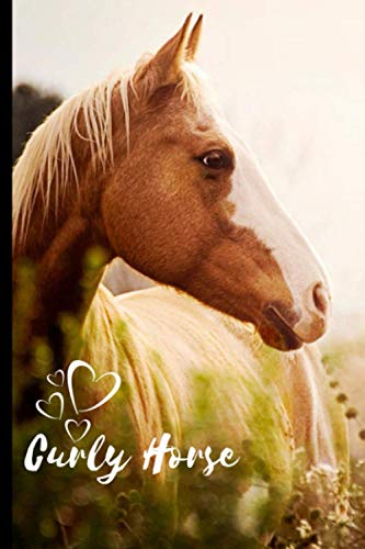 Curly Horse Notebook For Horse Lovers: Composition Notebook 6x9' Blank Lined Journal