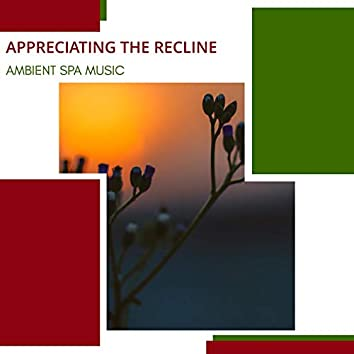 Appreciating The Recline - Ambient Spa Music