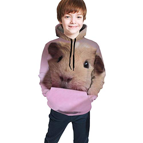 shenguang Sudadera con Capucha para niños Youth Hoodie Sweatshirt, Hamster Realistic 3D Digital Printed Pullover Tops for Boys Girls 7-20 Years