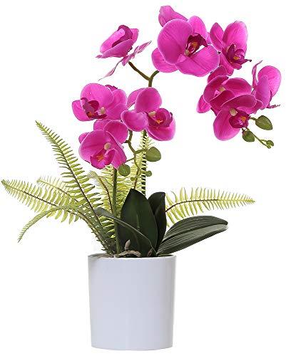 Olrla Blanca phalaenopsis Artificial orquídea Bonsai con cerámica Partido Boda del florero jardín decoración del hogar (Rojo 2)