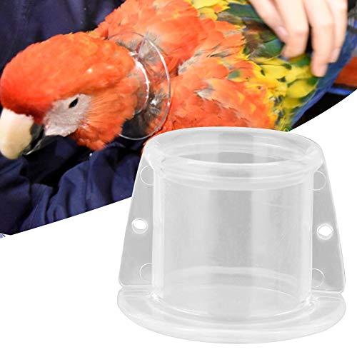 Pssopp Collar de Cuello de Loro Mascota Anti-mordida Recolección de Plumas Cuello Protector Collar de Cubierta Protectora para pájaros(S)