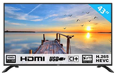 HKC 43F3 109 cm (43 Zoll) LED Fernseher (Full HD, Triple Tuner, CI+, HDMI, Mediaplayer per USB 2.0) [Energieklasse A]