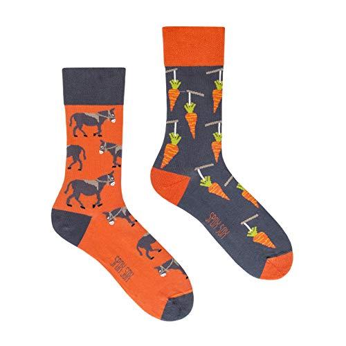 Spox Sox Casual Unisex - mehrfarbige, bunte Socken für Individualisten, Gr. 36-39, Esel und Karotte