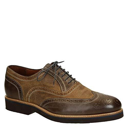 Zapatos Oxford de Hombre en Piel marrón Bicolor. - Número de Modelo: 06650/FORMA 40 Cancun Dark