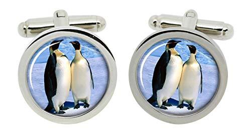 Gift Shop Pinguin Manschettenknöpfe in Chrom Kiste