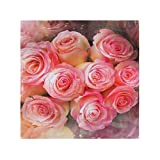 XiangHeFu Cena Rosas Preciosas Flor Encantadora San Valentín Servilletas de Tela Arte Lavable Reutilizable Fácil de Limpiar Mesa de Interior