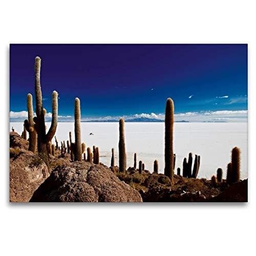 Premium Textil de lienzo 45cm x 30cm fortuna Horizontal de cactus en una Isla en größtem Sal el Lago de la Tierra, Salar de Uyuni, 120 x 80 cm