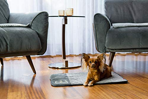 BOUTIQUE ZOO Exclusiv Hundematte mit Isolierung Thermo   Schlafmatte für Hunde oder Katzen   Hundebett, Hundekissen, Hundeliege, Matte für Haustier   Luxus Hundedecke   Farbe: Grau   Große: S