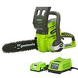 Greenworks Tools Motosierra de 24 V, kit de 25 cm, con batería de 2 Ah y cargador (3,8 m/s, velocidad de cadena de 25 cm, incluye batería de 2 Ah y cargador)