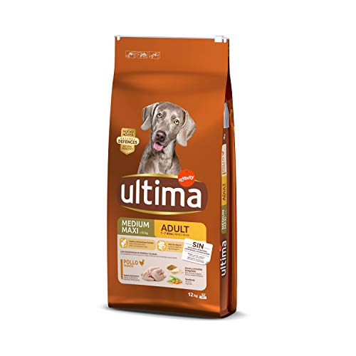 Ultima Cibo per Cani Medium Maxi Adulto con Pollo - 12 kg