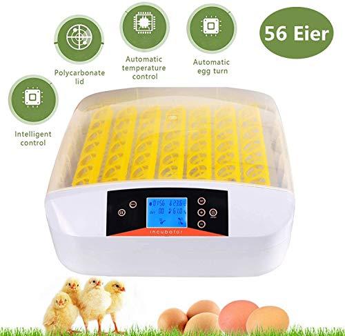 Oppikle 56 Eier Intelligentes digitales Brutmaschine Brutkasten mit LED Temperaturanzeige und Feuchtigkeitsregulierung,Inkubator Vollautomatische Brutmaschine (56 Eier)