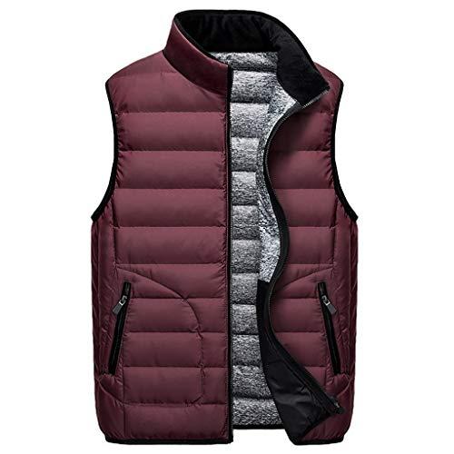 Vest heren vrijetijdsstandaard kraag, mannen stijlvol verpakt lichtgewicht omlaag met zakken, winddicht warm wit eend naar beneden
