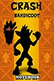 Notebook: Crash Bandicoot Minimalist Poster This Character Was A , Journal for Writing, College Ruled Size 6' x 9', 110 Pages