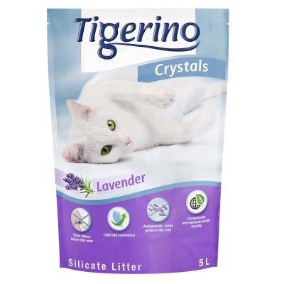 Tigerino Crystals Arena para Gatos de Lavanda