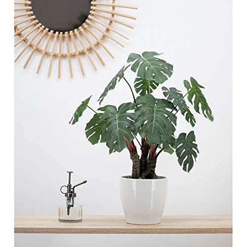 Línea Déco | Monstera artificial en maceta de cerámica blanca | 56 cm | Planta verde artificial | Planta tropical | Decoración del hogar | Casa oficina