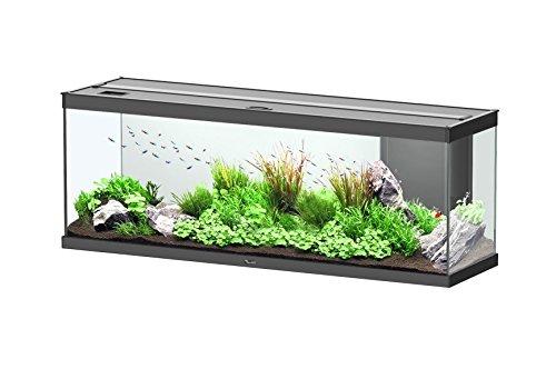 Floridivy Aquarium D/écorations en Plastique Simul/é Herbe Longue Eau Plantes artificielles Poisson Paysage Ornement r/éservoir d/écor