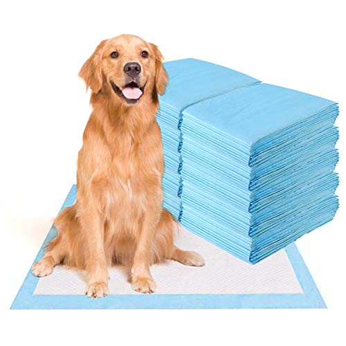 best piddle pads for dogs