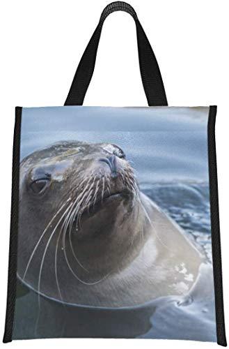 Bolsas de almuerzo para mujeres Lindo león marino en bolsa enfriador de agua Tote Fun Lunch Tote Reutilizable, plegable Mantiene la comida caliente / fría para mujeres, hombres, escuela, ofi