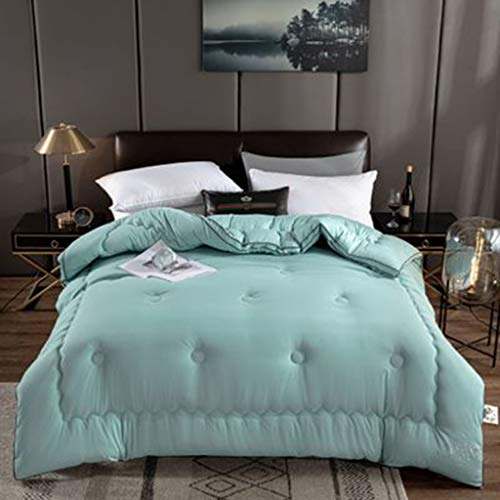 GYRZFSL Thickened Soybean Quilt In Winter Double Warm And Thick Winter Quilt Soft And Comfortable Winter Cotton Duvet Duvet Double Bed