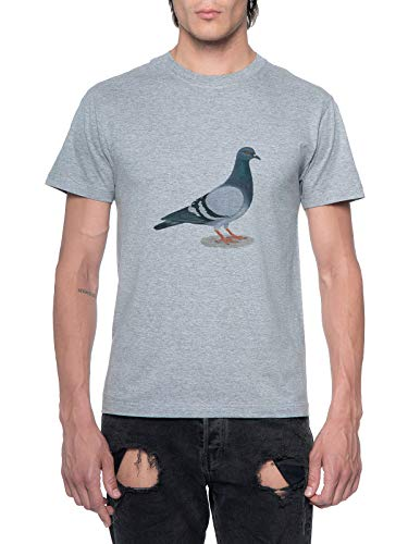 Pigeon Standing On The Ground Mens T-Shirt Grey Round Neck
