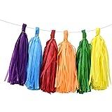 HQdeal Guirnalda de borlas de 25x35cm, papel de seda, borlas, banderines de borlas para fiestas, bodas, baby shower, despedida de soltera, trona, banderines, decoraciones de cumpleaños neutrales (B)