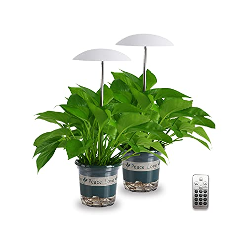 LED Grow Light for Indoor Plants 2 Pack, Intelligent USB Small Plant Lights with Remote Controller, Height Adjustable, Automatic Timer, Ideal for Home Decoration