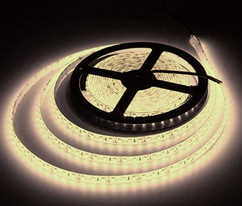 JANDEI - Tira LED 12V Luz Neutra 4200K 600LED Bobina 5 Metros IP65 Exterior SMD2835 Base Adhesiva De Alta Calidad 3M. Corte Cada 25 Milímetros. [Clase de eficiencia energética A+] (4200K)
