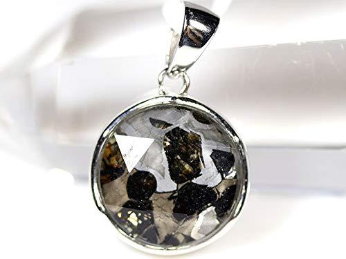 隕石 パラサイト パラサイト隕石 ケニア共和国セリコ産(tg180424par001silmin)