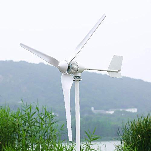 Turbina eólica horizontal de 2000 W con controlador híbrido e inversor 24v 48v 96v generador de viento molino de energía libre (sin controlador, 48V)