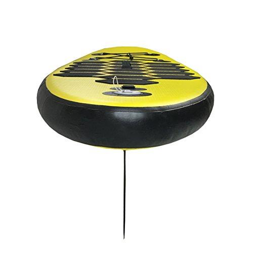 Aquaparx Board - 5
